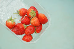 Punnet of ripe strawberries Royalty Free Stock Photo