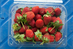 Punnet and spilled fresh red ripe organic strawberries Royalty Free Stock Photography