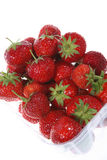 Punnet of Strawberries. Strawberries in a transparent plastic punnet Royalty Free Stock Images