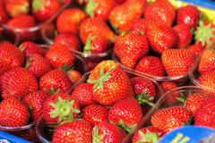 Punnets of red strawberries Stock Images