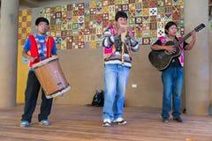 Puno, Peru - circa Juni 2015: De musici presteren in traditionele Peruviaanse kleren dichtbij Puno, Peru stock foto's