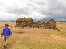 Puno, Peru - December 10, 2011: Man walking towards Small farm near Tombs of Sillustani near Puno, Bolivia royalty free stock image