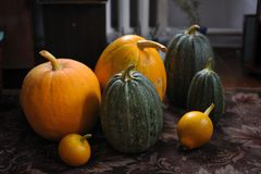 Punpkins royalty free stock image