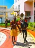 Punt-a-Pitre, Guadeloupe - Februari 09, 2013: De lokale zwarte mensen in Caraïbisch Carnaval Royalty-vrije Stock Afbeelding