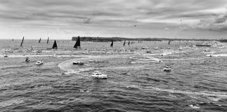 Punta BW della testa della corsa di yacht di D S Fotografia Stock Libera da Diritti