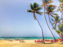 Punta Cana Stock Afbeelding