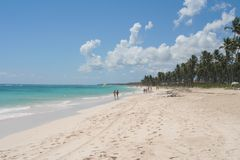 Punta Cana beach. With palm trees stock photography