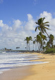 Punta cana beach Royalty Free Stock Photography