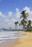 Punta cana beach Royalty Free Stock Photography