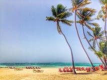 Punta Cana. Beach in punta Cana Dominican Republic Stock Image
