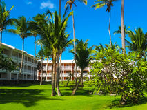 Punta Cana, Dominican republic - February 02, 2013: The VIK Arena Blanca hotel under palms Royalty Free Stock Photos