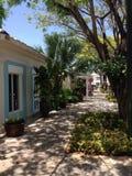Punta Cana  Dominican Republic palm three  restaurant. Sun day   sunny weather sunny  cafe Stock Photo