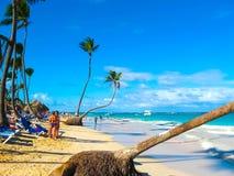 Punta Cana, Dominikanska republiken - Februari 02, 2013: Sikten av sandstranden med palmträd Royaltyfria Bilder