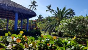 Punta cana hotel stock image