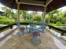 Punta Cana möte Arkivbild