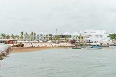 PUNTA CANA, REPÚBLICA DOMINICANA - 18 DE JUNHO DE 2015: A tentativa local dos povos remove a erva daninha da água na praia Classe Fotos de Stock