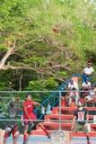 PUNTA CANA, REPÚBLICA DOMINICANA - 22 DE MAYO DE 2017: Un grupo de baloncesto del juego de niños en una calle de la ciudad vertic Imágenes de archivo libres de regalías