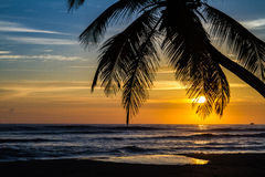 Punta Cana sunrise - 06. This is a photo captured in Punta Cana on September 25th, 2015. The sun just started to rise, giving the sky a golden color royalty free stock photos