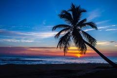 Punta Cana wschód słońca - 01 Zdjęcia Royalty Free