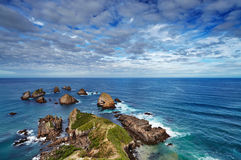 Punta de la pepita, Nueva Zelandia Foto de archivo