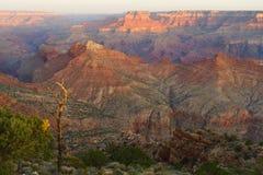 Punta de opinión del desierto, parque nacional de la barranca magnífica Fotografía de archivo