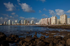 Punta del Este royalty free stock photos