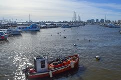 Punta del Este, Uruguay, nine june two thousand and sixteen. Red. Boat surrounded by white boats Stock Photos