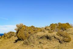 Punta del Marquez Viewpoint, Chubut, la Argentina Imagen de archivo libre de regalías