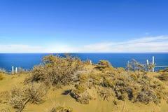 Punta del Marquez Viewpoint, Chubut, la Argentina Imágenes de archivo libres de regalías