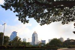 Punta del veiw de Bangkok del parque del lunphini Imagen de archivo