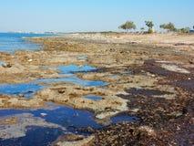 Punta Grossa kust Fotografering för Bildbyråer