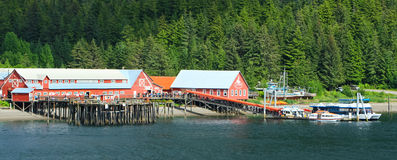Punta helada soleada del estrecho de Alaska Fotos de archivo