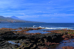 Punta-Hidalgo Stockfotos