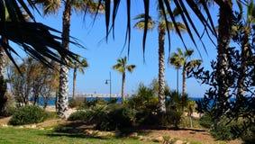 Punta Prima widok Torrevieja zdjęcie stock