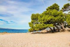 Punta Rata Beach Royalty Free Stock Photography