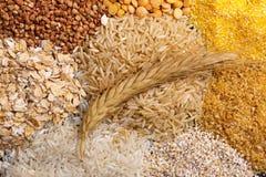 Punta su uno scattering dei cereali sotto forma di mucchio Fotografia Stock