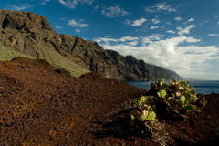 Punta Teno. The north-western end part of Tenerife