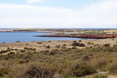 Punta Tombo in the Atlantic Ocean, Patagonia, Argentina. Punta Tombo, the peninsula into the Atlantic Ocean, south of Trelew in Chubut Province, Argentina where Royalty Free Stock Photography