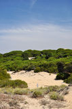 Punta Umbria Hiszpania Fotografia Royalty Free