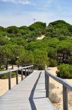 Punta Umbria Spain - duinen Stock Afbeelding
