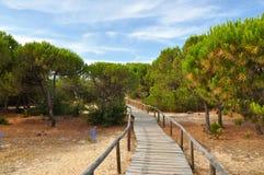 Punta Umbria Spain - duinen Stock Fotografie
