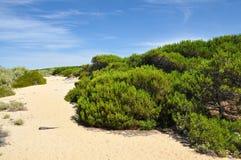 Punta Umbria Spain - dunas Fotografía de archivo