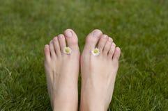 Puntas de los pies del verano Foto de archivo libre de regalías