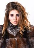 Punte che di cura di capelli di inverno dovreste seguire Concetto di cura di capelli Pelliccia della ragazza che posa con l'accon fotografia stock libera da diritti
