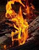 Punte della fiamma sulla legna da ardere. Fotografia Stock