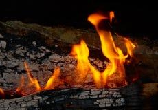 Punte della fiamma sulla legna da ardere. Fotografia Stock Libera da Diritti