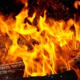 Punte della fiamma sulla legna da ardere. Immagini Stock
