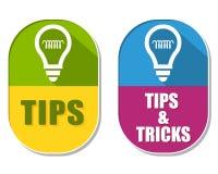 Punte e trucchi con i simboli della lampadina, due etichette ellittiche Fotografia Stock Libera da Diritti