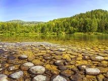 Puntello del fiume sotto cielo blu libero Fotografia Stock