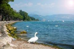 Puntello del lago Garda Immagine Stock
